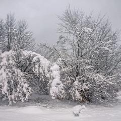 Сніг - на поріг, а хмара - із хати.