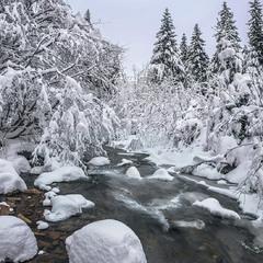 Тече річка невеличка посеред білої тиші.