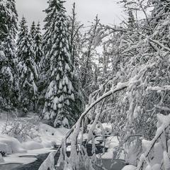 Зима, аданака.