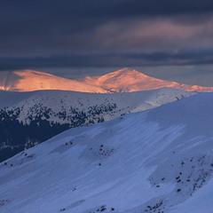 В снігах мої ноги, серце й голова, проти ночі - воно ж і видно?