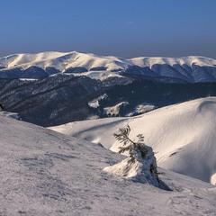 Ти диви - які кольорові сніги ще трапляються.
