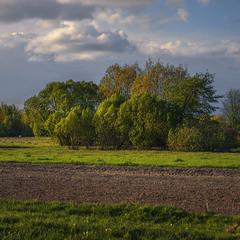 Дорога далека у поля край села - упродовж всього життя.