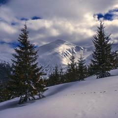 Посеред глибоких снігів трапляються ще під вечір брами в альтернативну реальність.