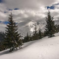 Насправді - кінець березня був, промінь пробився крізь хмари і жАхнув просто по схилу Говерли.