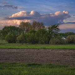 У поля край села