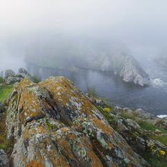 Млосний ранок на чудовому вогкому камені урвища над неспокійною водою річки Бог.