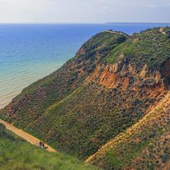 Цікаві хворми й кольори на березі Чорного Моря.