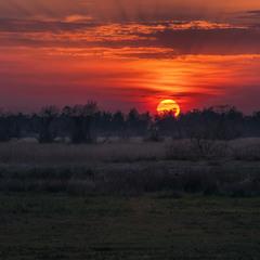 Багато сонця. Неорані дикі поля, степ біля села Геройське.