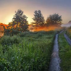 Соковитий радісний світанок з туманами, що розповзаються і розлітаються.