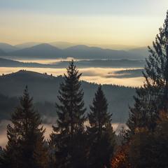 Свіжий погляд в минулі тумани.