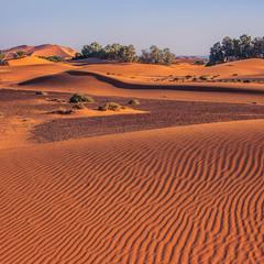 В пісках