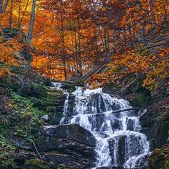 Дивитись як біжить вода, як догоряє осінь - можна ще і ще.
