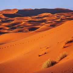 Червона заграва над пустелею – сонце ховається.