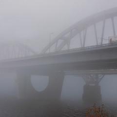 Життя летить, туман - непорушний (так здається).