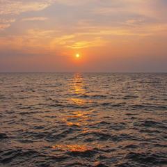 Час бичка: сонце ЩЕ низенько, і ранок тут - навкруги.