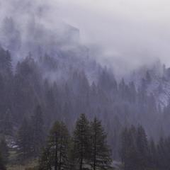 Дощ - клапті хмар - клапті туманів - клапті згадок пропливають.