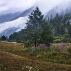 Дощ і йде, і йде, і йде, й іде... На схили гір, на долину.
