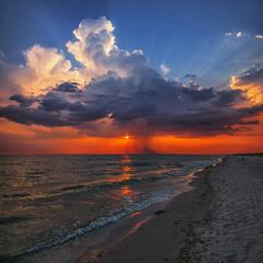 Кольрове життя триває і триває - на небі, на суші, на морі.