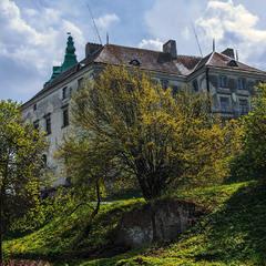 Олеський замок в квітні.