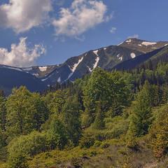 Коли приходить кольорове літо, ми йдемо на гору Бребенескул. Оту, що посередині.