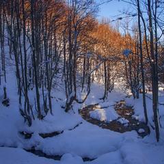 Надвечір в тіні мороз береться хутко. Хоча сонце десь ще й шпарить.