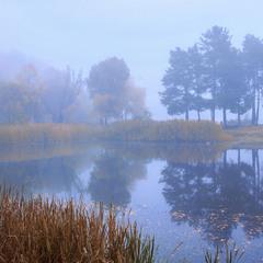 За туманом нічого не видно. А перед туманом - видно все (майже).