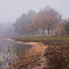 Осінь в тумані.