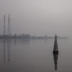Чайка проти ночі, буй, туман, імла.