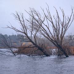 Листопад. Не тільки листя опадає - острови йдуть під воду. То що казати про марення і сподіваня!?