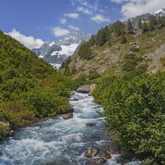 Вода стікає з гір і до моря біжить оце.