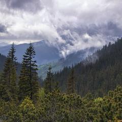 Ці хмари з мілким надокучливим дощиком були як похмурі, роз'ятрені марення.
