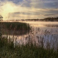 Буває туман трошки відірветься від води - і ось уже й хмарка повисла в повітрі.