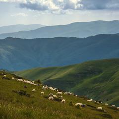 Де він - той горизонт подій? Лише гори в імлі, небо в хмарах і вівці в траві.