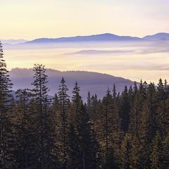 Сліпуча із Свидівця ця світлина з маревом, імлою, туманом і хмарами липневими вранішніми