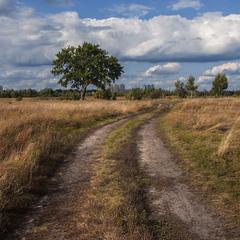 При кінці вересня здавалося, що до осені - як до Києва рАчки. Ото він - на обрії - той Київ.