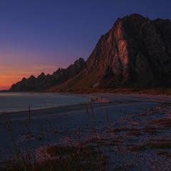 Рожева ніч накрила все село.  Пісок, чортополох, конюшина, тимофіївка і всі-всі-всі.