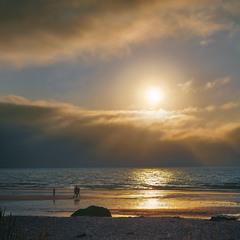 Сонце запалахкотіло, затопило, засліпило тута все кругом.