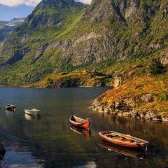 Транспортна колізія. Край берега прив'язані човни. А як іншим пройти?