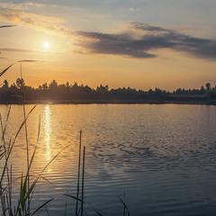 Вранішнє сонечко - лагідне, спокійне.