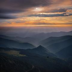 Між небом і землею: життя між нами пролягає, птахи під нами пролітають, хмари над нами пропливають.