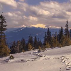 Хмари, ліс розступилися, виглянули Петрос і Говерла. А ось і заметені сліди - куди весна чкурнула.