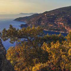 Сонце десь ховається у солону воду, а навкруги ліс і скелі.