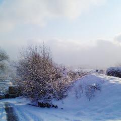 """Ялтинская зима """"Как на холсте..."""""""
