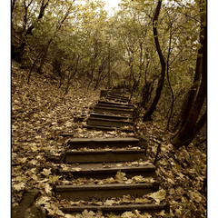 Старая лестница – ноголомалка