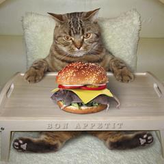 Про любимый бургер... :)