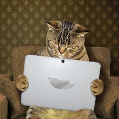 Любитель интернета...