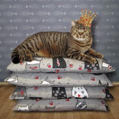 Царь....просто царь...