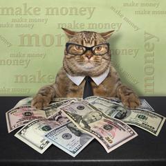 Businesscat...
