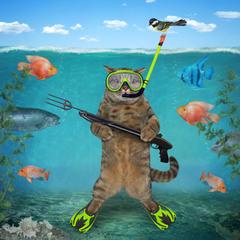 Підводна рибалка ...
