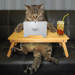 Ну и чё там у вас... в интернетах?